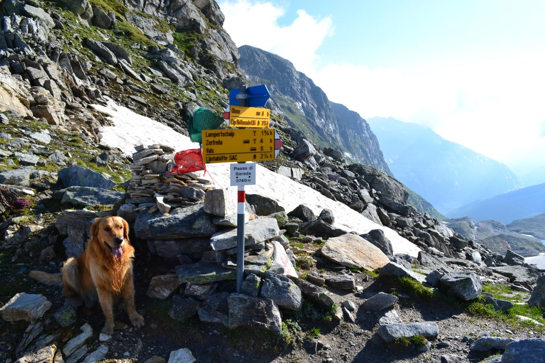Passo Soreda (2759 m)