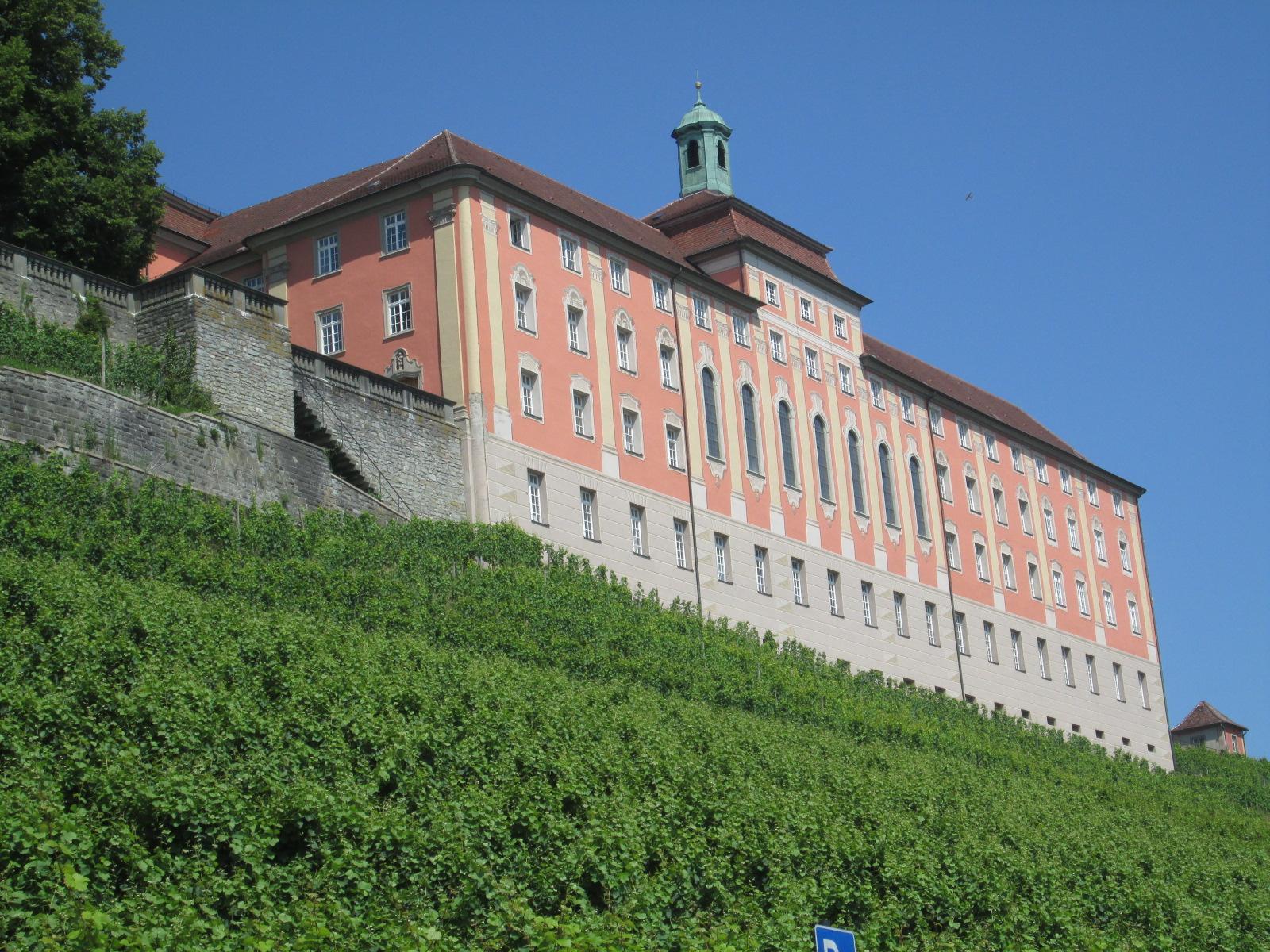 castelli e vigneti a Meersburg