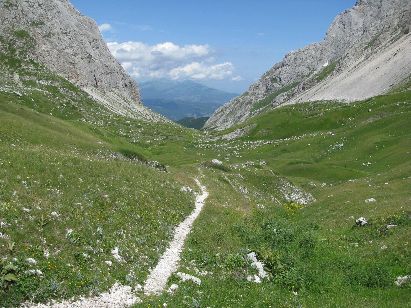 Aquila (Monte) da Pietracamela per la Valle del Maone 2014-08-02