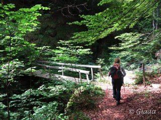 Il pontino che attraversa il Rio Bianco poco prima di arrivare a Viozene