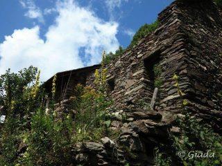 Vecchie case abbandonate a Merea