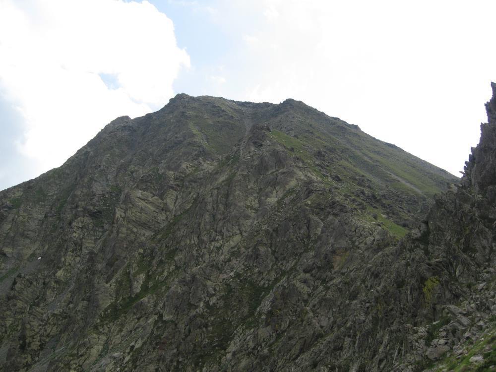 Saletta (Monte) dal Ponte del Medico per il Passo di Laroussa 2014-08-02