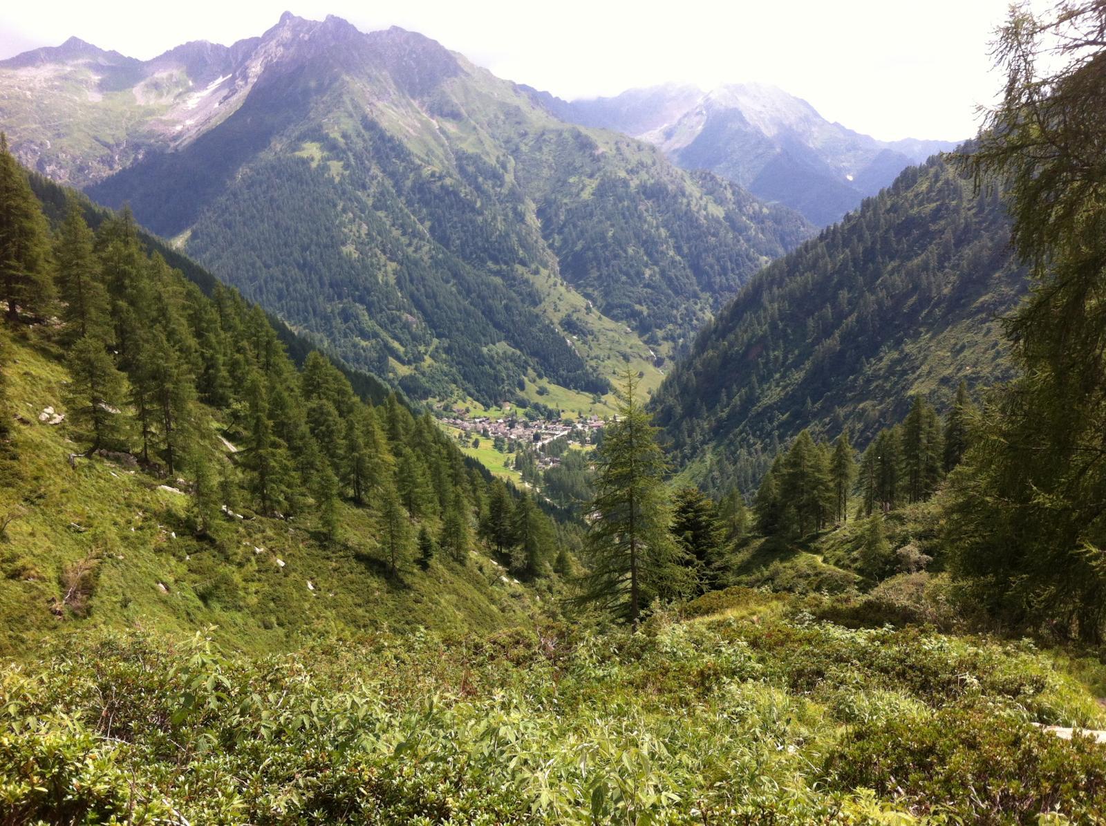 Montevecchio (Pizzo) versante nord 2014-08-06