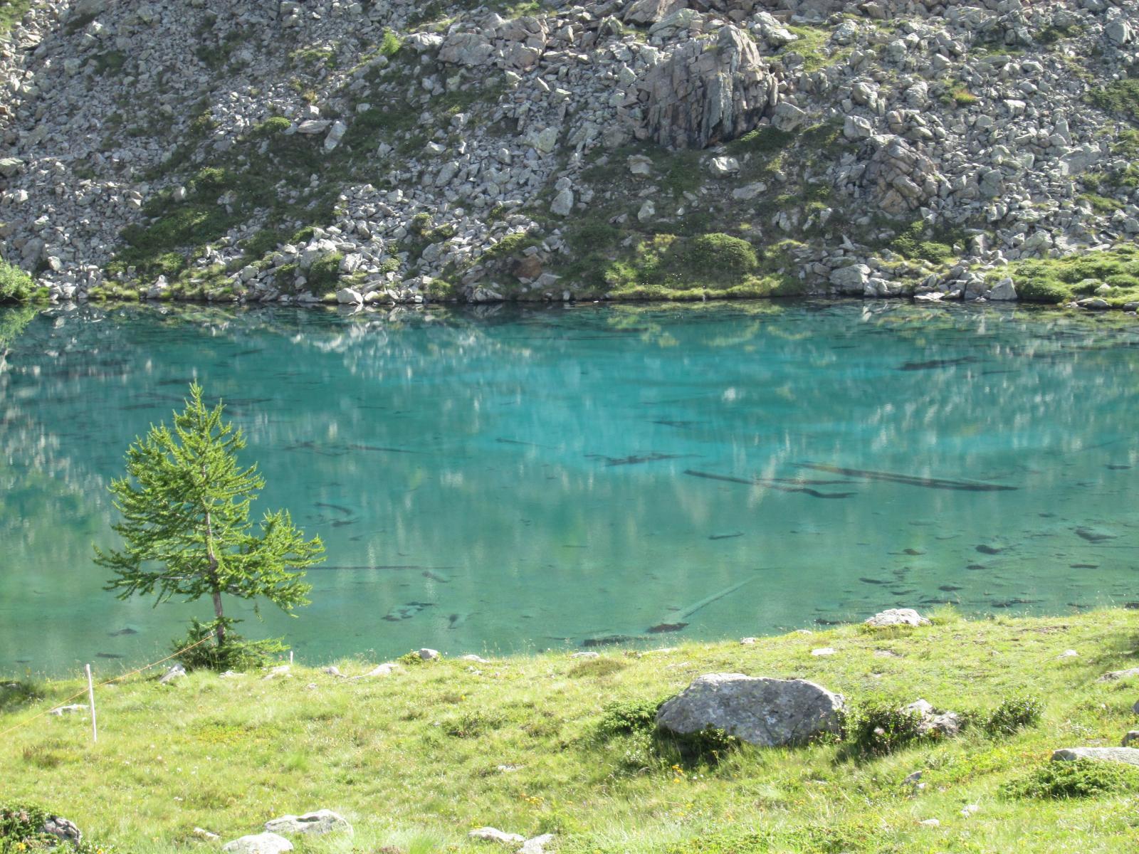 lago muffe'