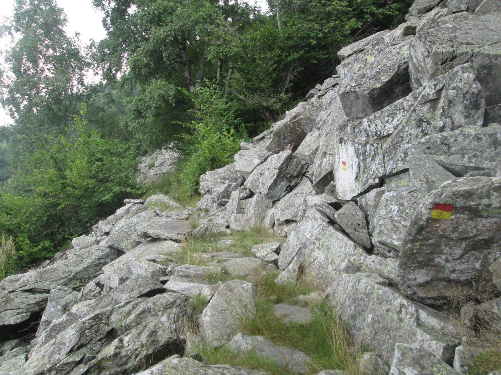 un particolare del sentiero (poco ciclabile) 332B