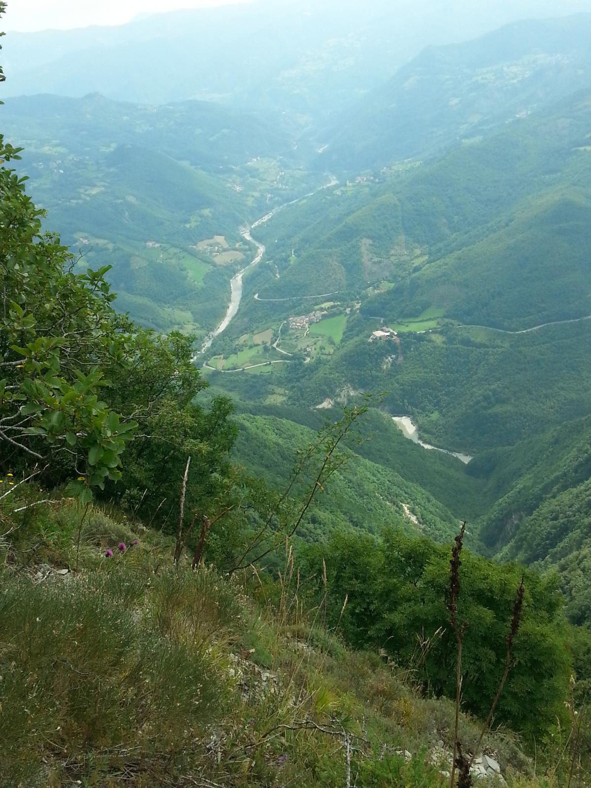 Lesima (Monte) da Rovaiolo Vecchio 2014-08-09