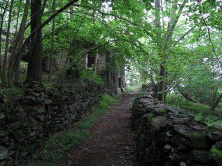 sentiero di ritorno