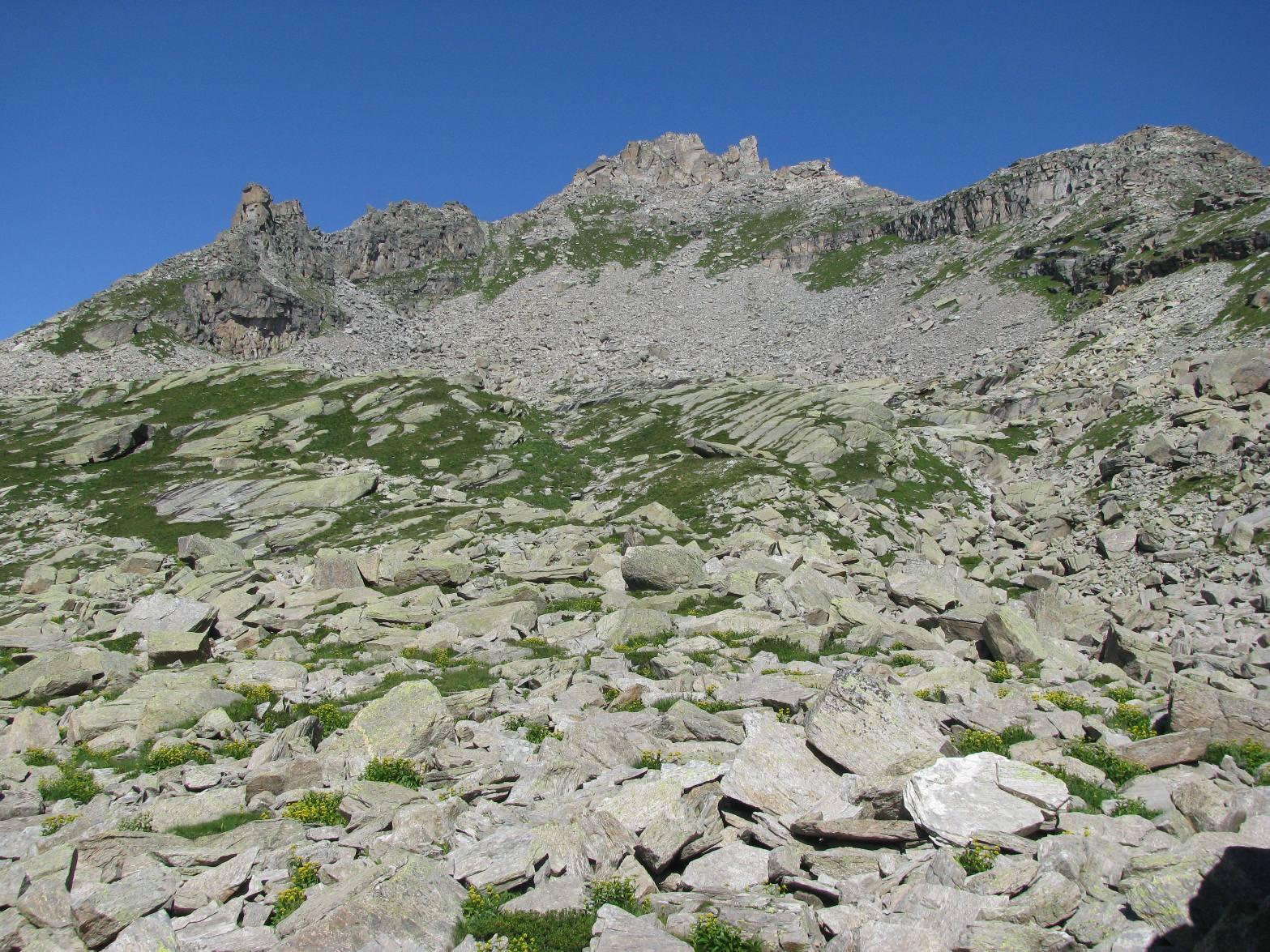 Bessun (Monte) da Carello per il Colle della Forca e l'Alpe Paiaire 2014-08-14