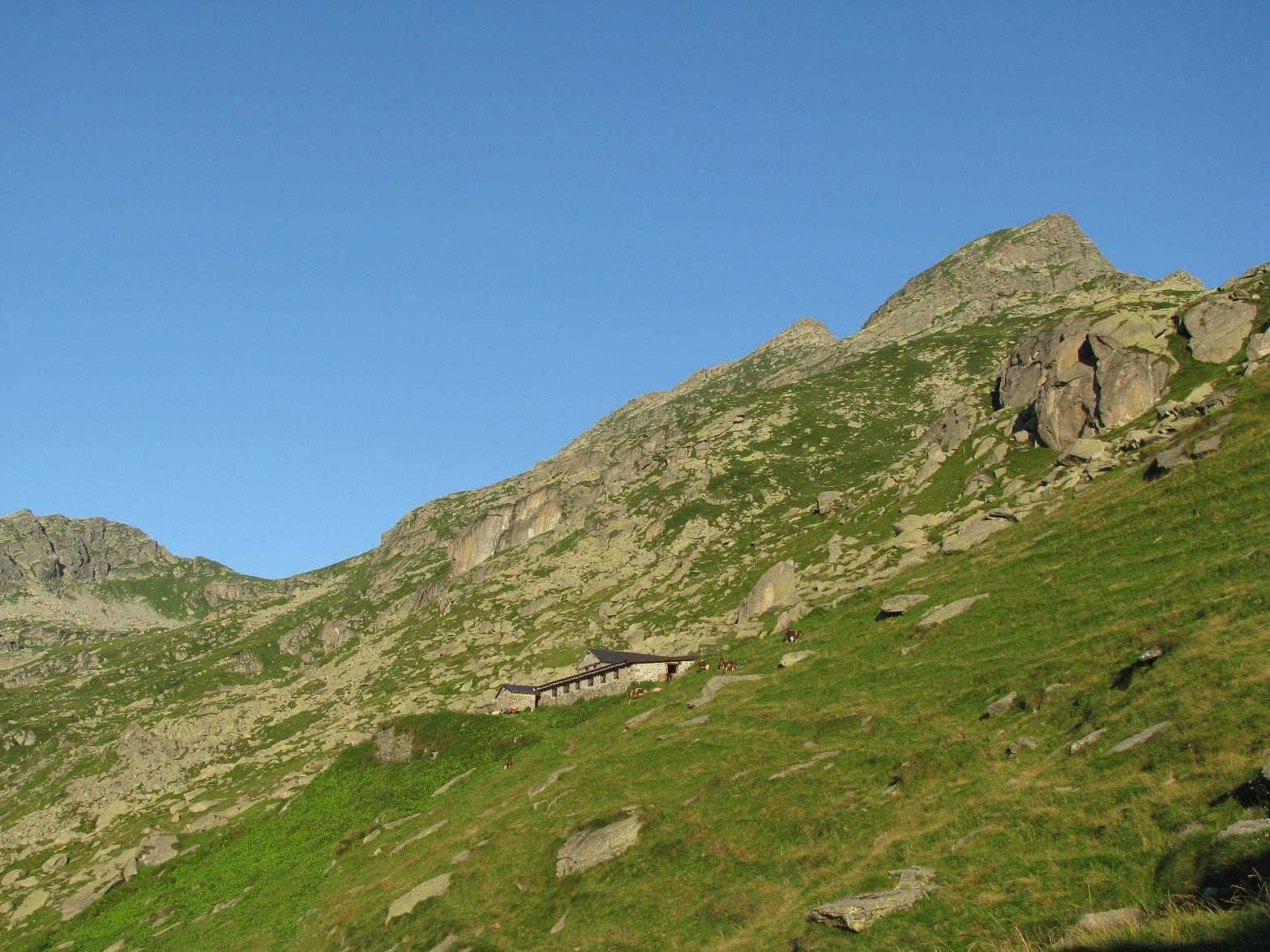 Alpe Balma ed in fondo il Colle della Forca