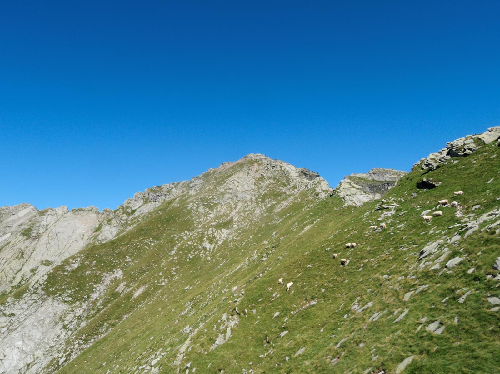 La Scheggia, versante Valle Cortino