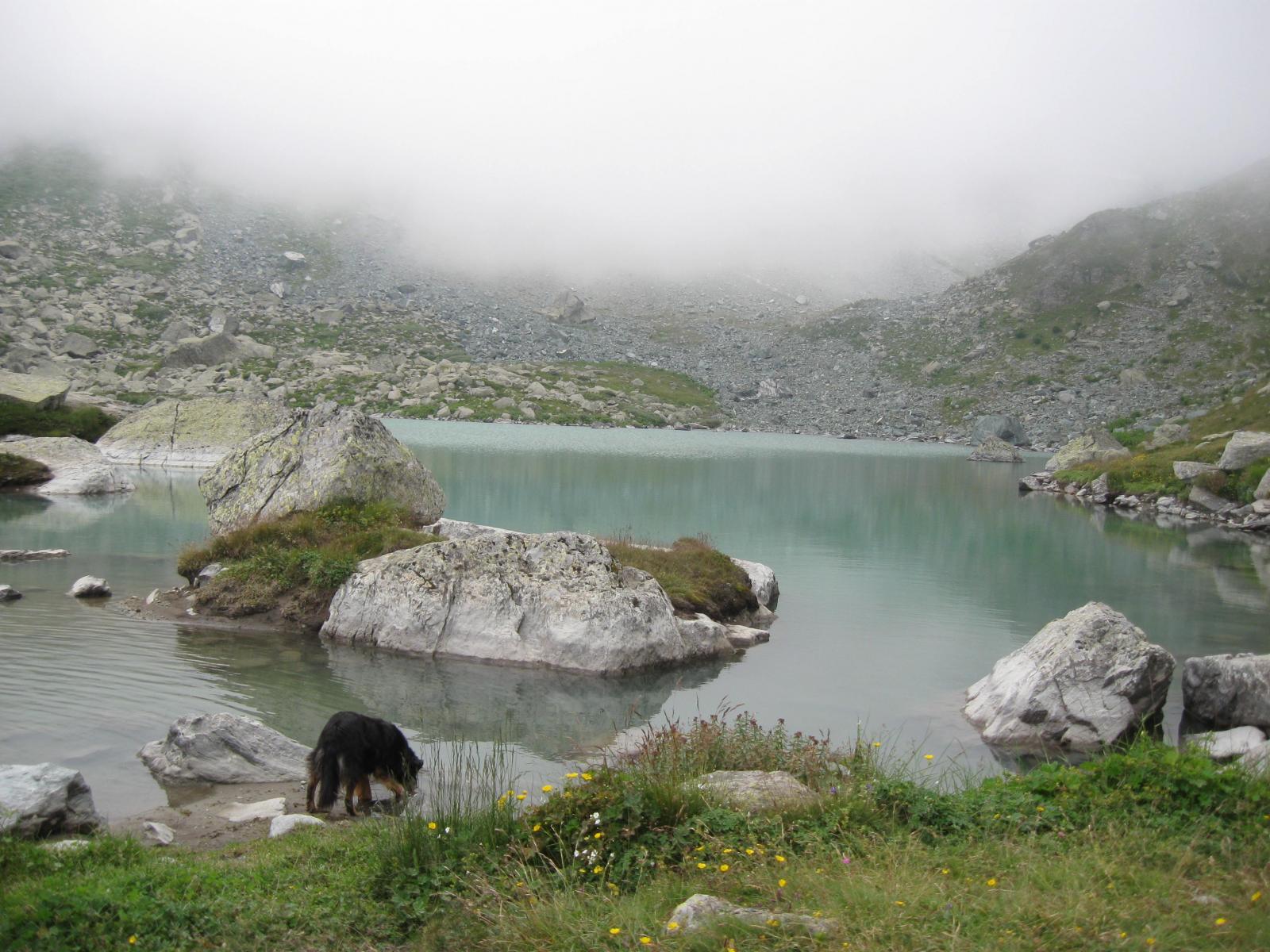 Ci si disseta al lago Chiaretto