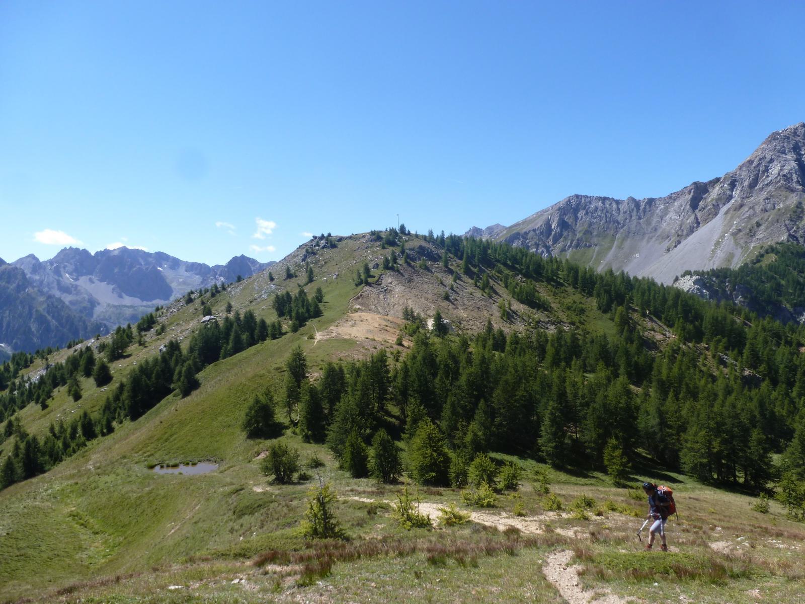 Estelletta (Monte) da Viviere per il Colle Ciarbonnet 2014-08-17