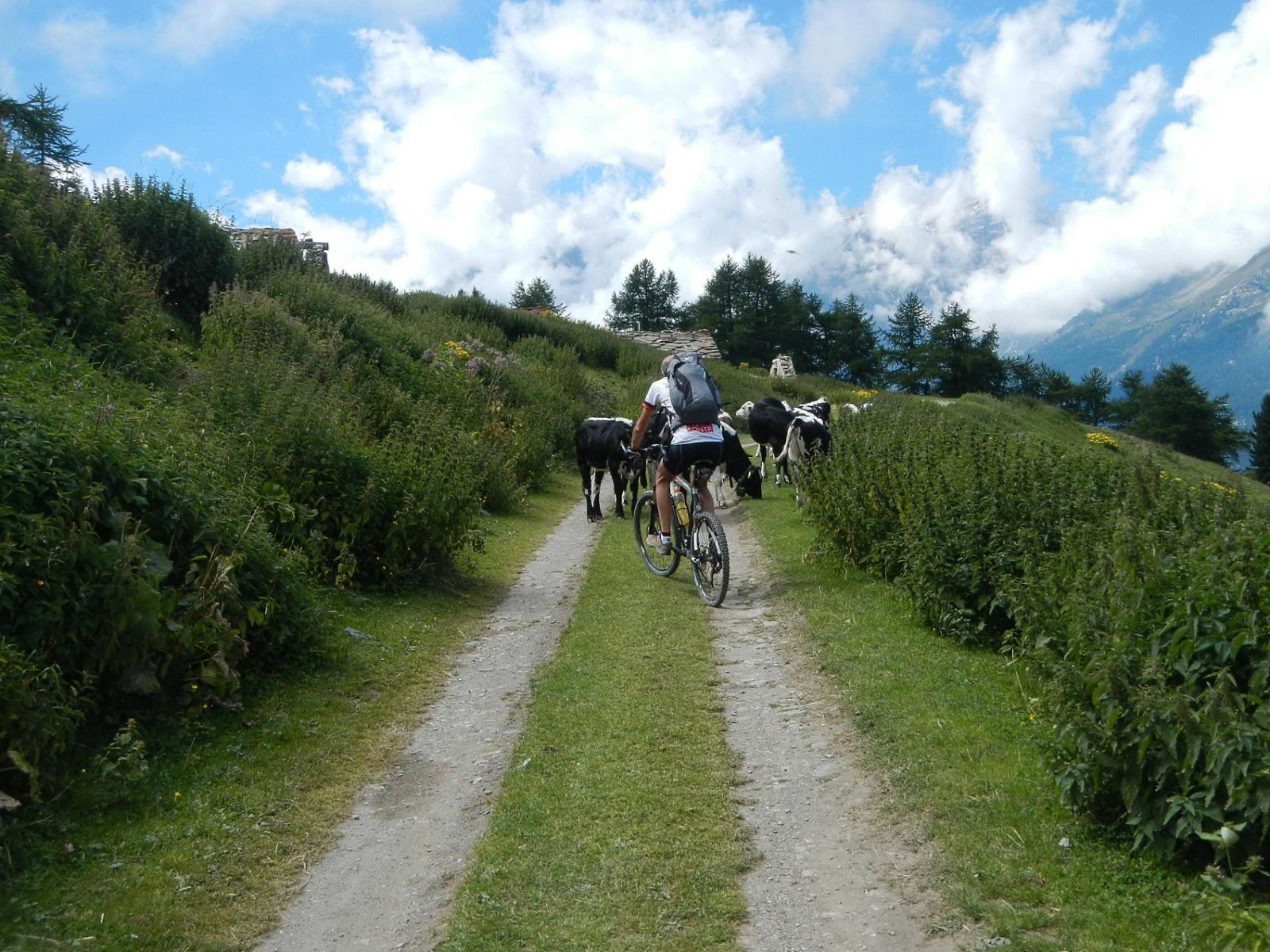 poco prima dell'Alpe Arguel