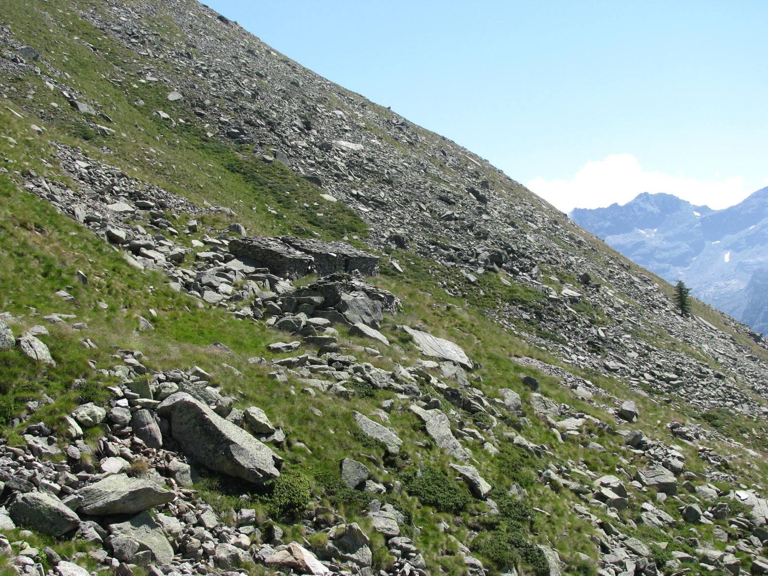 Arrivo alle baite dell'Alpe Maon