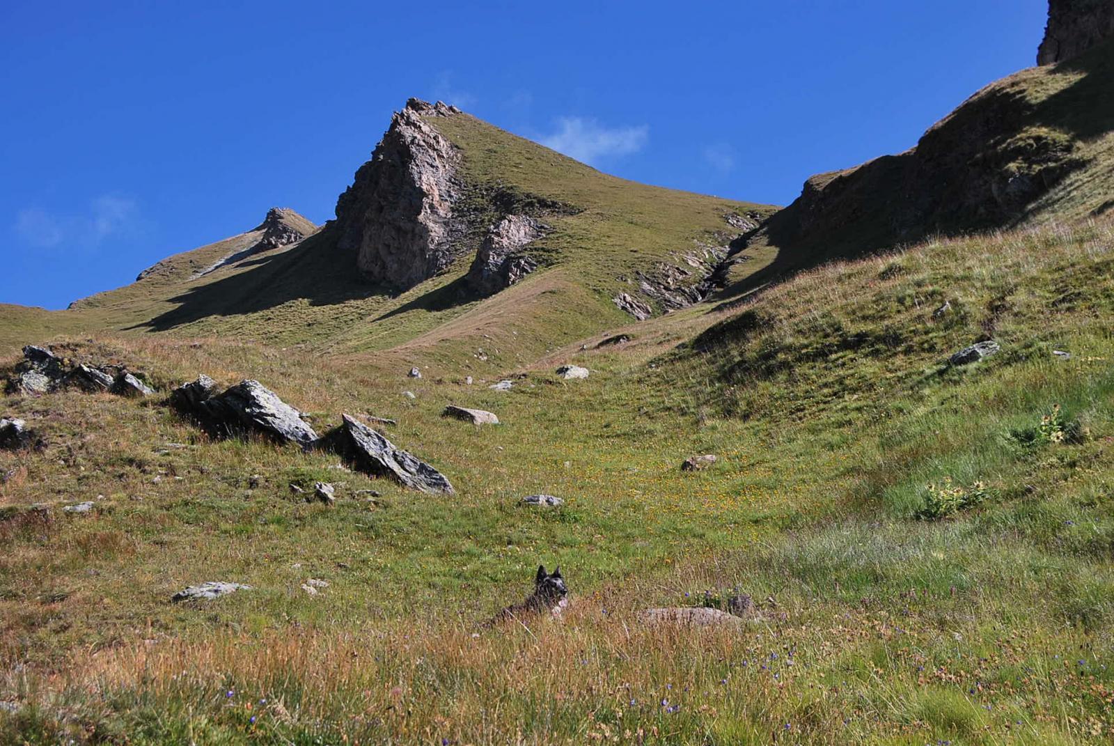 Ultimo tratto sulla conca prativa, quasi allo sbocco nel vallone superiore