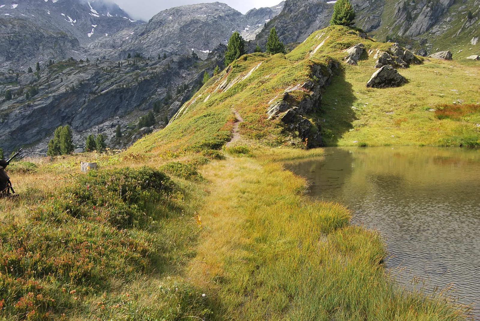 La partenza del sentiero sconosciuto nei pressi del laghetto, pochi metri dopo l'incontro tra i sentieri 7 e 18.