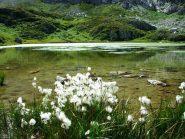 lago della brignola