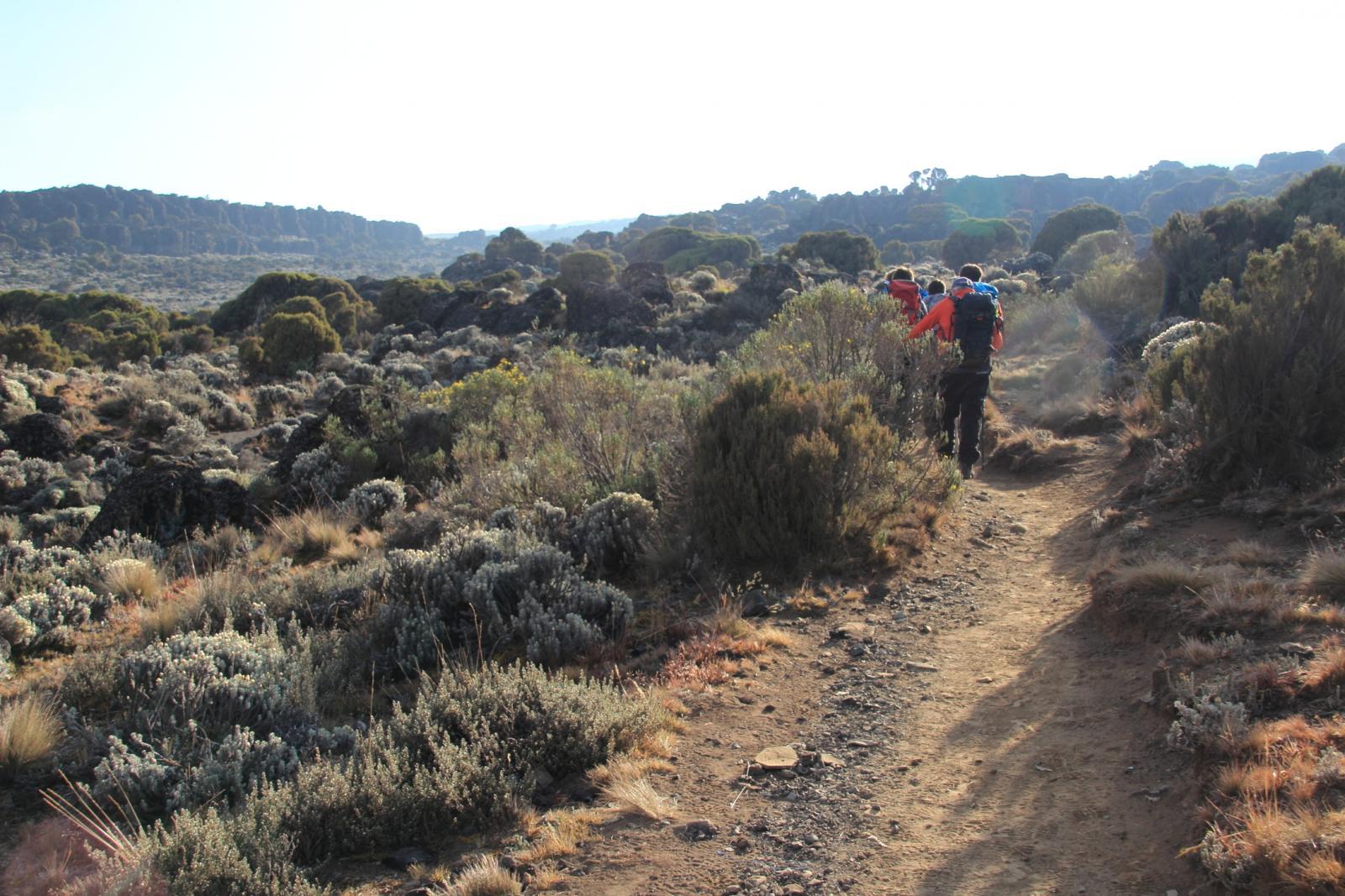 partiti dallo Shira Plateau (23-8-2014)