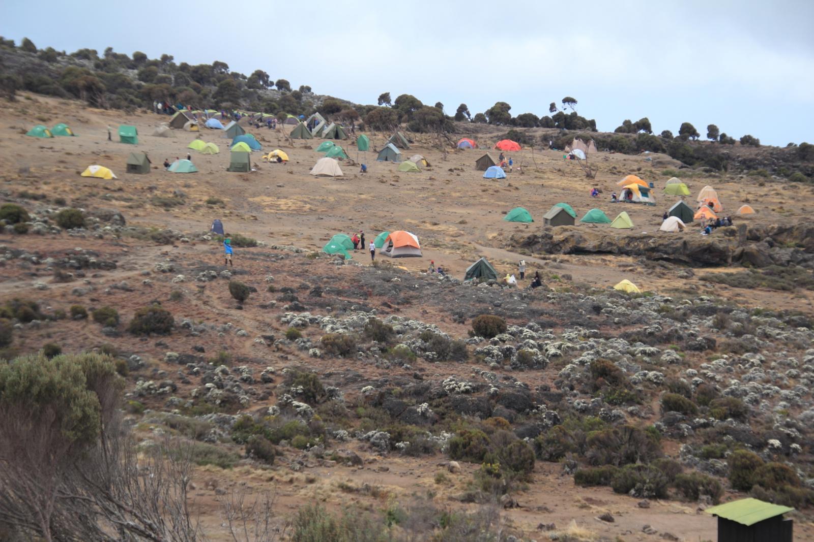 il grande pianoro dello Shira Plateau Camp m. 3840 (22-8-2014)