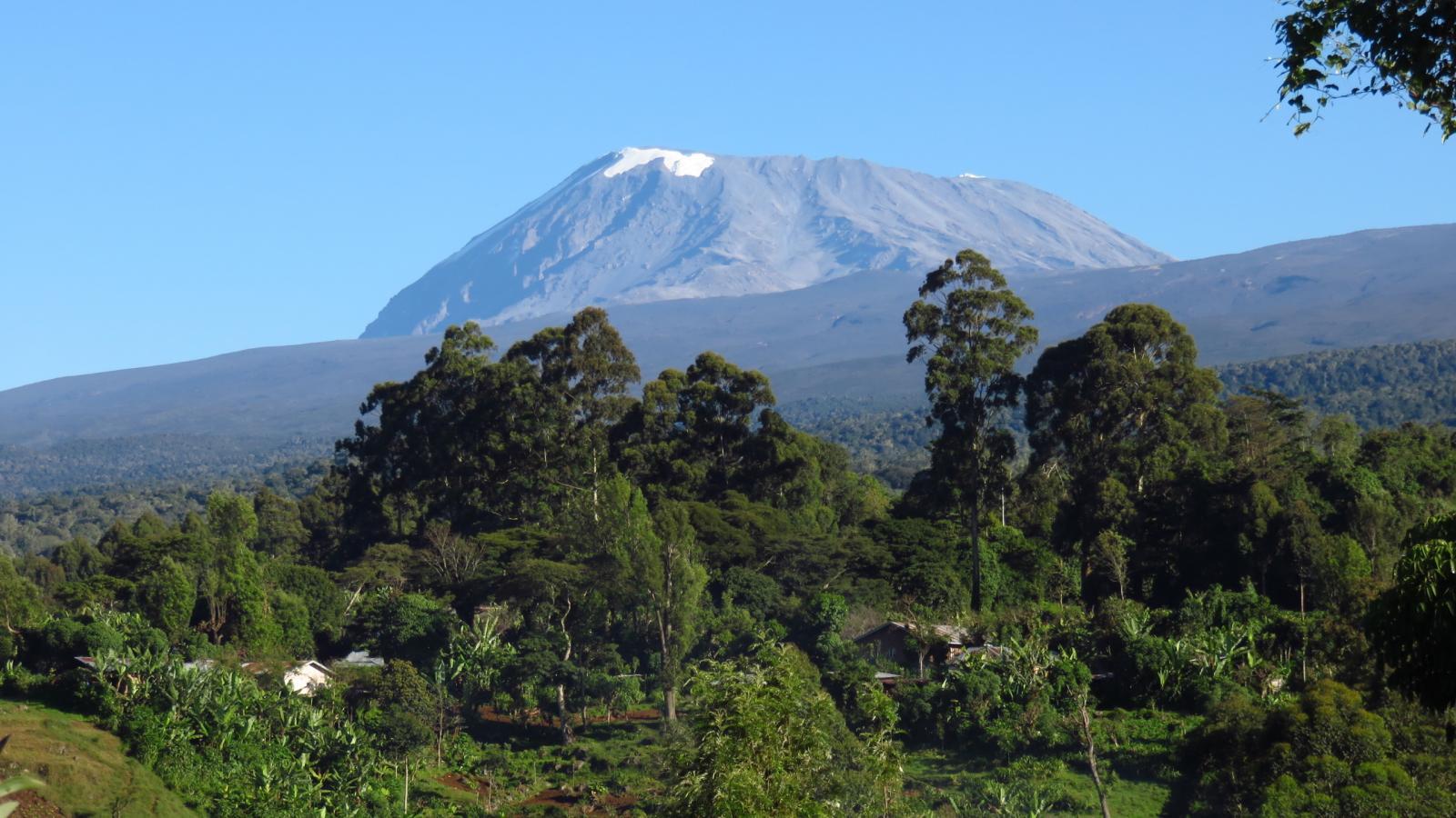 una bella visuale sul Kilimanjaro dal nostro lodge a Marangu (21-8-2014)
