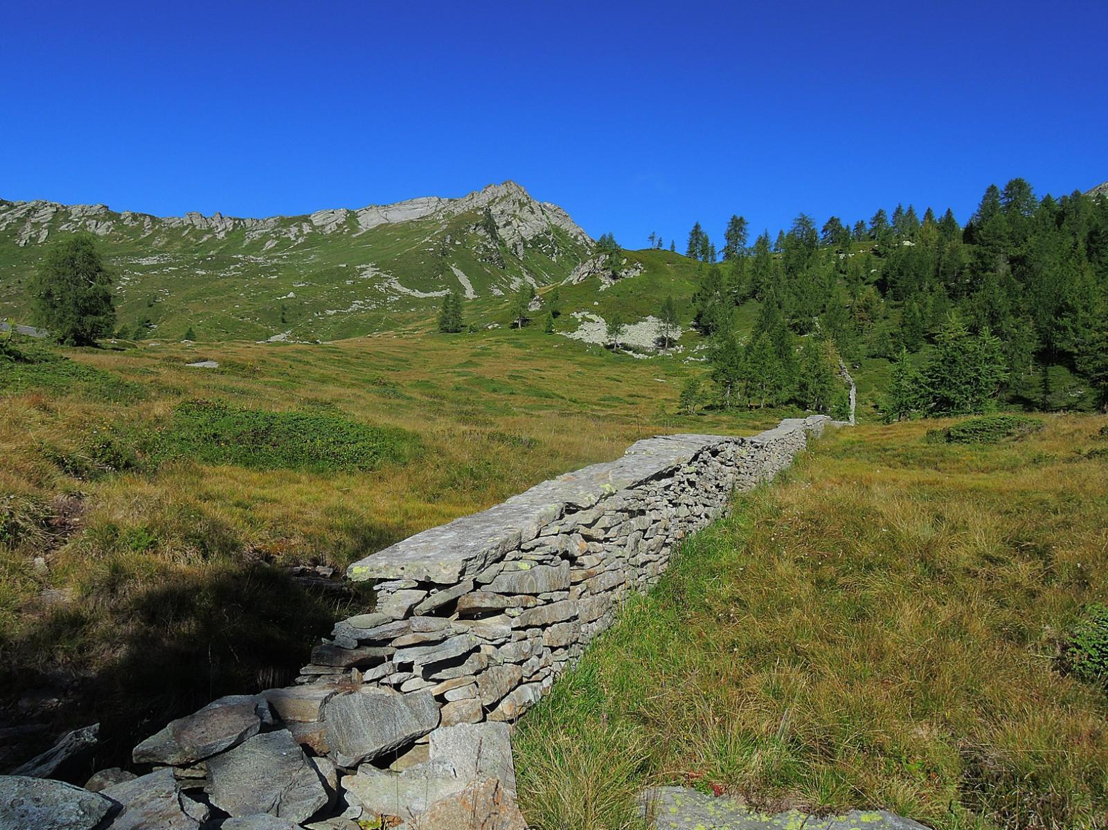 Muro a secco tra Alpe Piana e Alpe Soglio