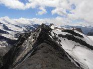 07 - vista cresta verso la Punta Bousson