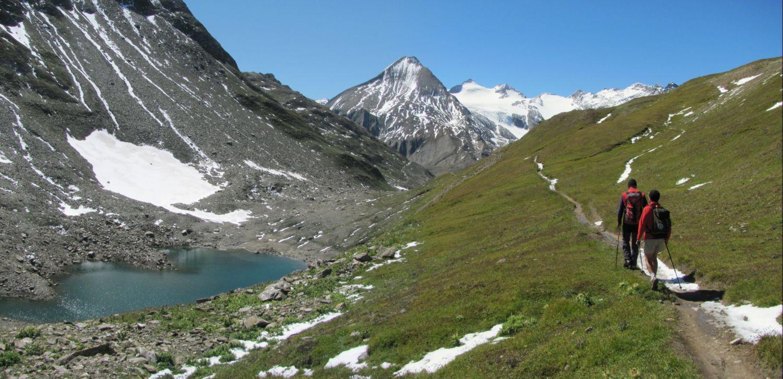 Sullo sfondo la punta dei Camosci e il Blinnenhorn