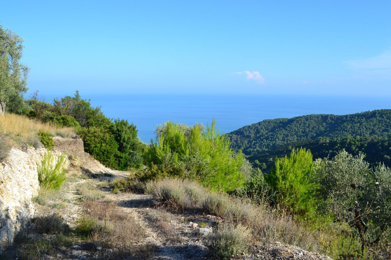 vista sul mare salendo alla Torre Vezzosi