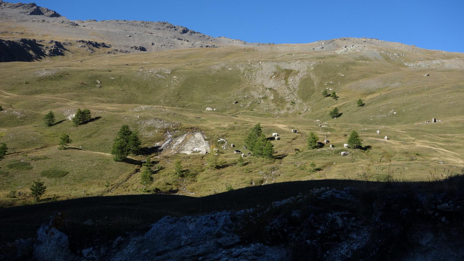 Valle Fredda