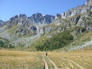 Verso l'Alpe Buscagna