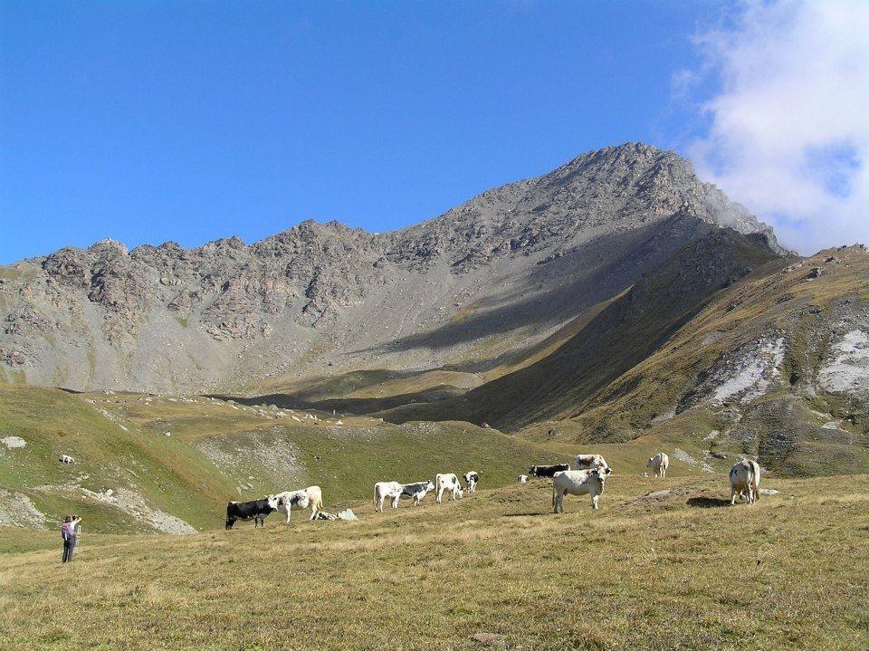 Petit Mont Cenis (Signal du) o Punta Clairy dal Refuge du Petit Mont Cenis per il Col de Sollieres 2014-09-14