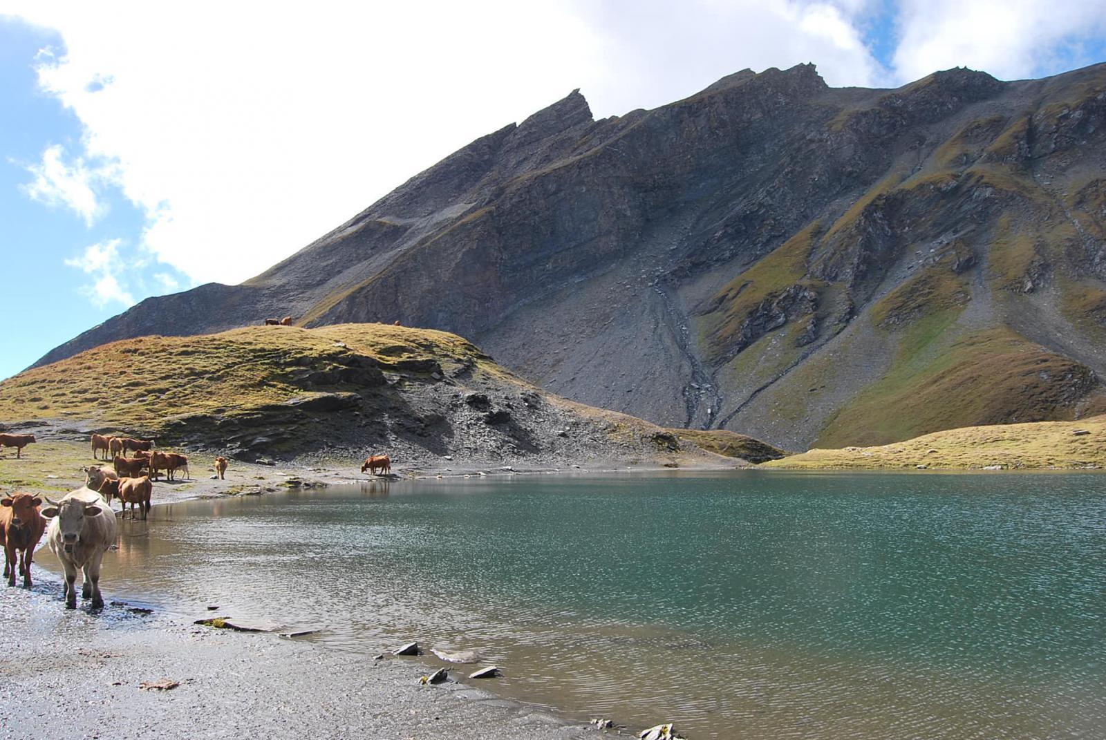 Il Lac sans Fond ed il Roc du Belleface