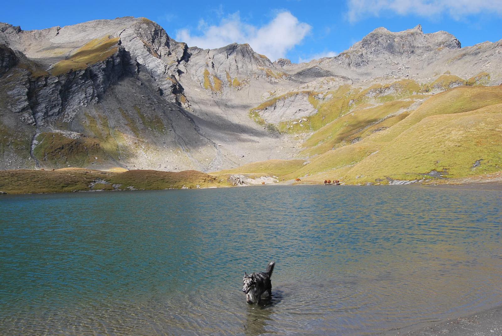 Il lago, la Pointe du Lac sans Fond, il Mont Forclaz ed il Col du Lac sans Fond