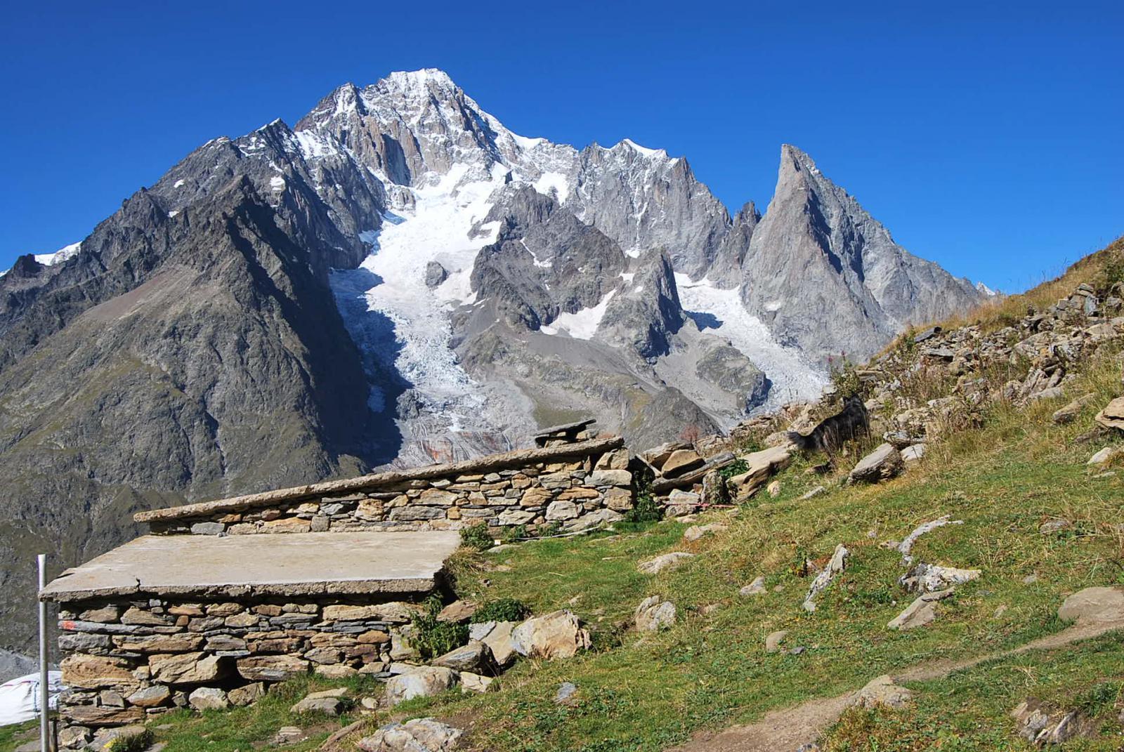 Arp Vieille damon e Monte Bianco