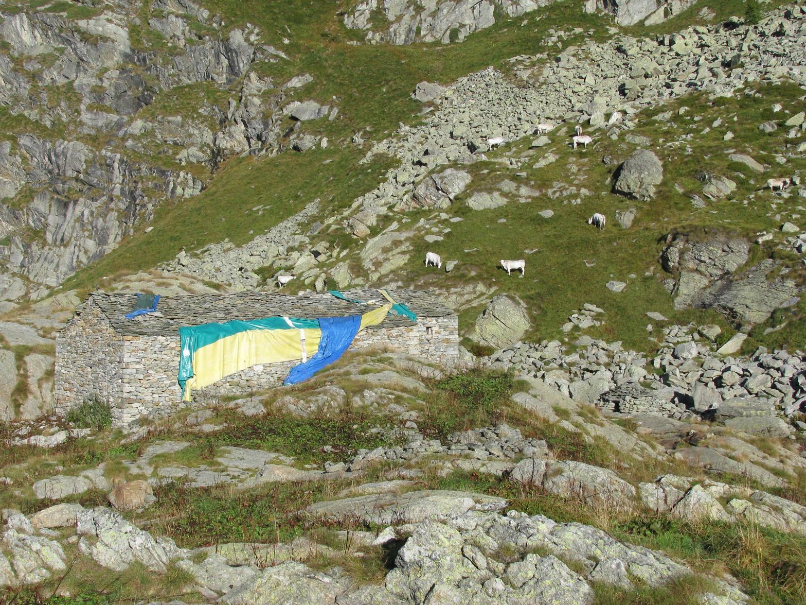 Baita Alpe Canaussa