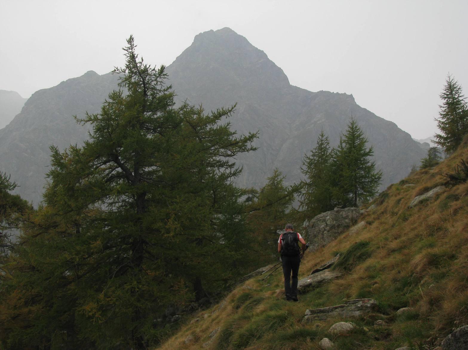 Il profilo del Monte Colombino, salendo al Vasinetto