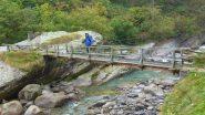 Sul ponte per Forzo