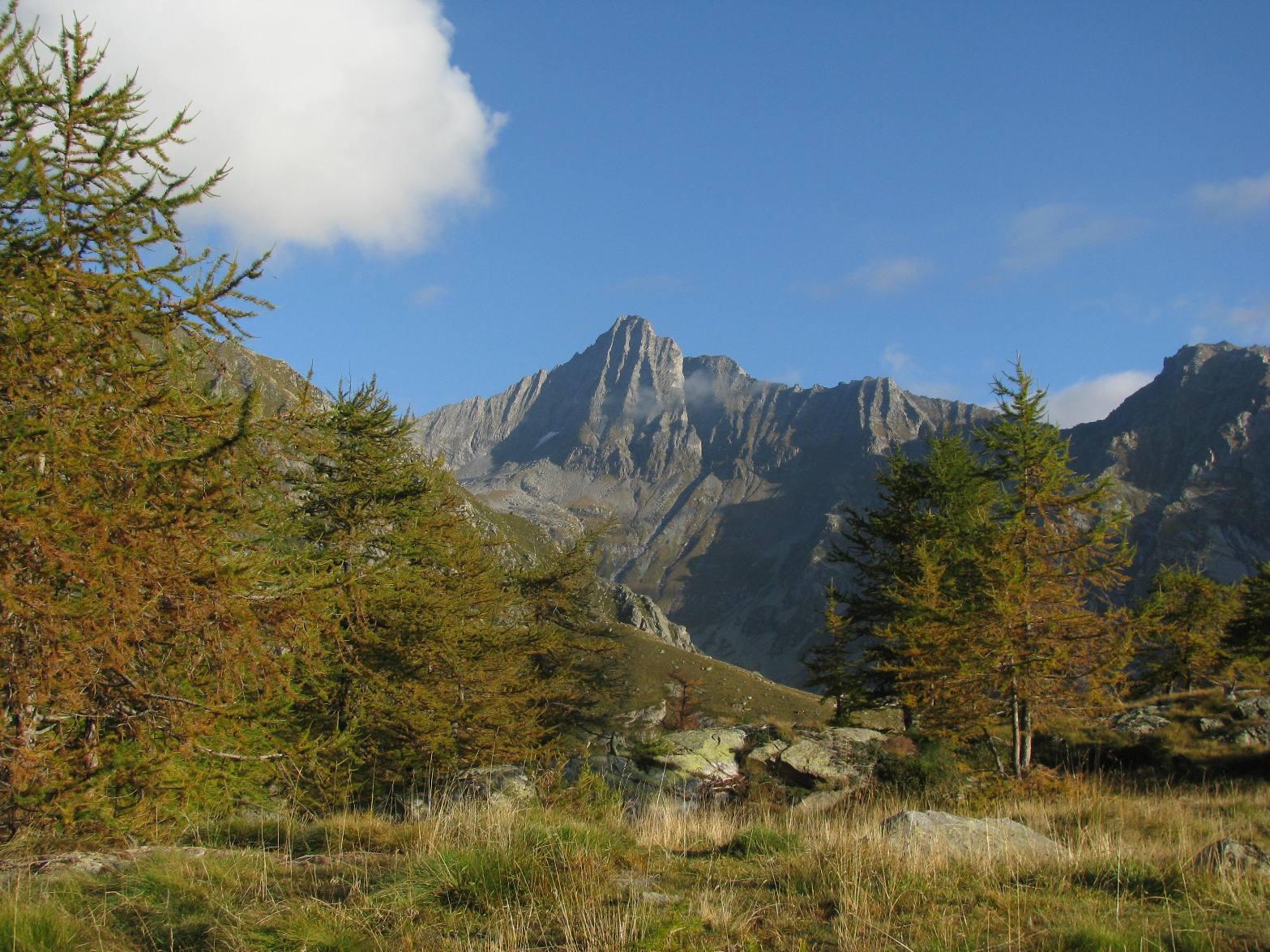 Colombino (Costa) quota 2586 m da Forzo 2014-10-02
