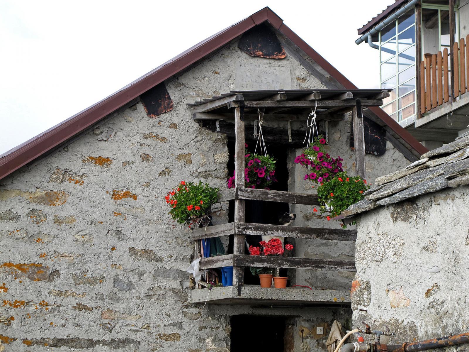Balcone fiorito all'alpe Pian Crest