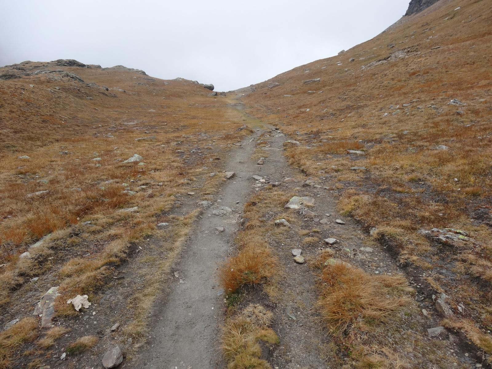 il bel sentiero 7