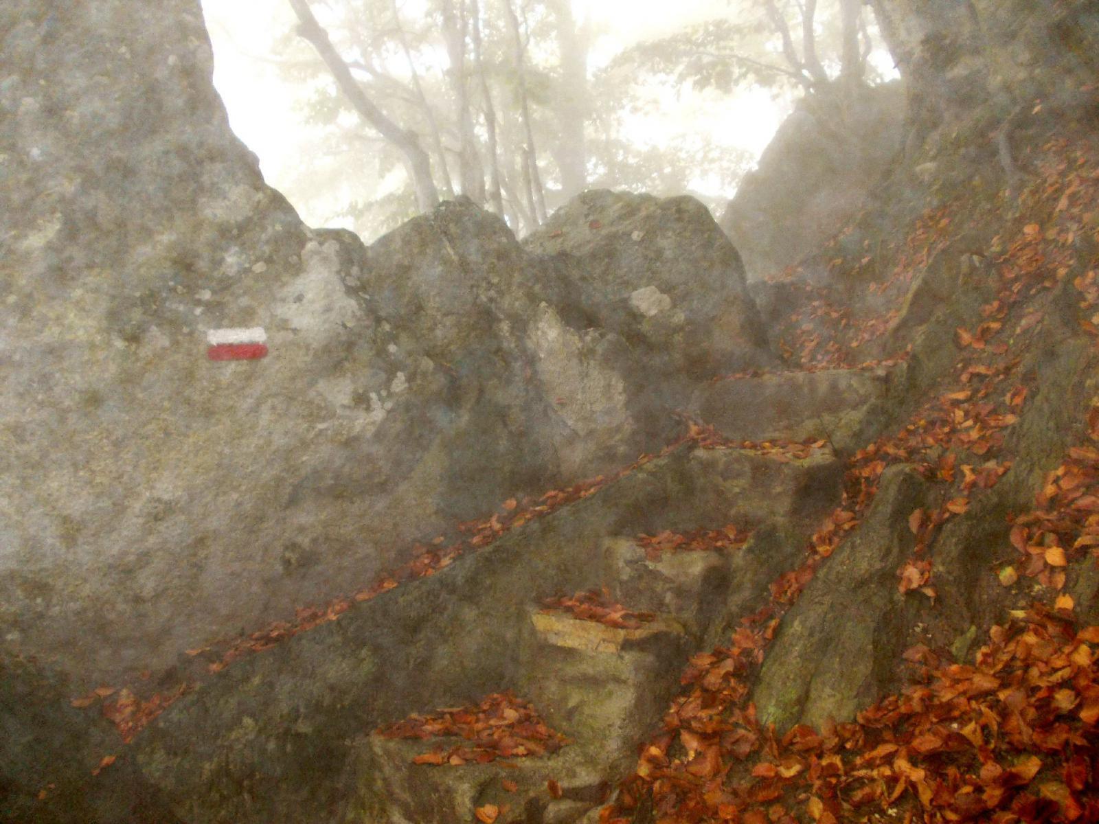 scalini nel tratto piu alto del sentiero