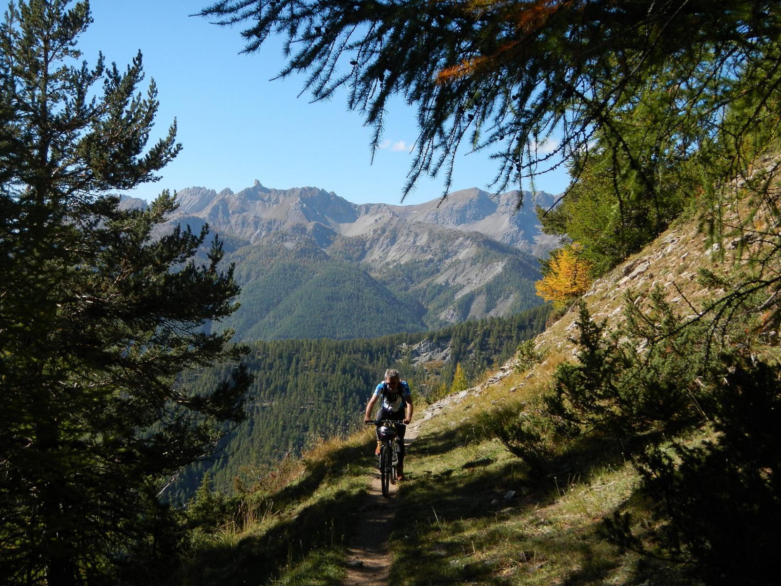 verso la fine del bosco sopra Souliers