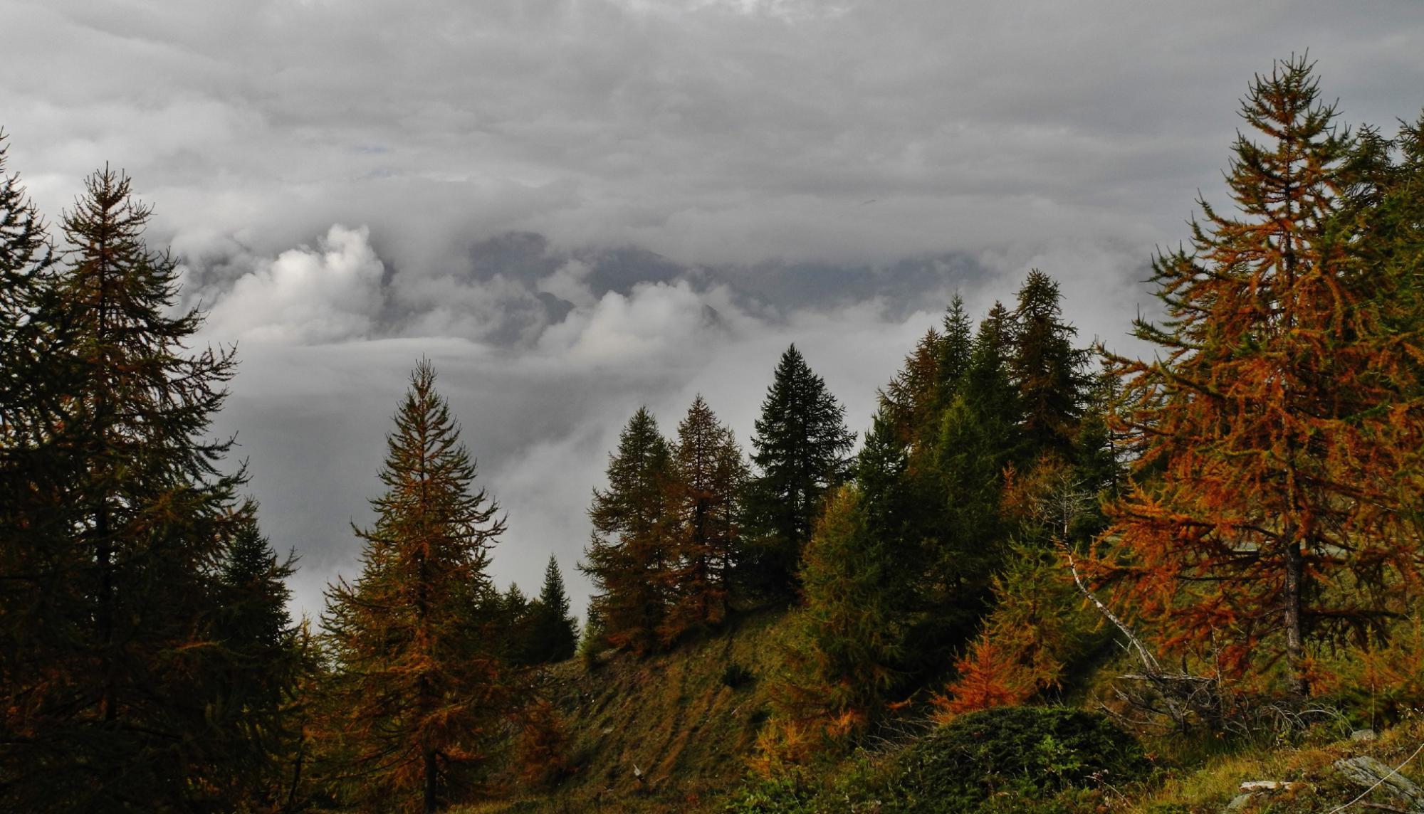 Orsiera (Monte, Punta Nord) Cresta Dumontel 2014-10-12