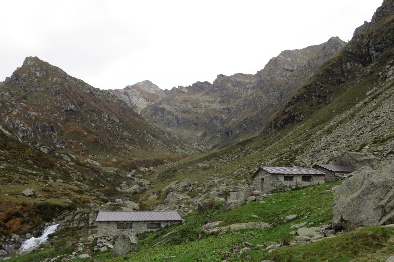 Alpi Pasquere