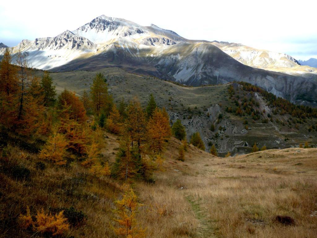 Scolettas (Passo Sottano delle) e Colle di Stau giro da Pietraporzio 2014-10-16