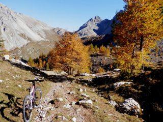 più in basso si accendono i colori dell'autunno