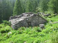 Alpe Truna