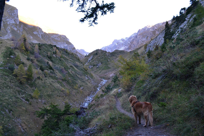 percorso iniziale nel vallone