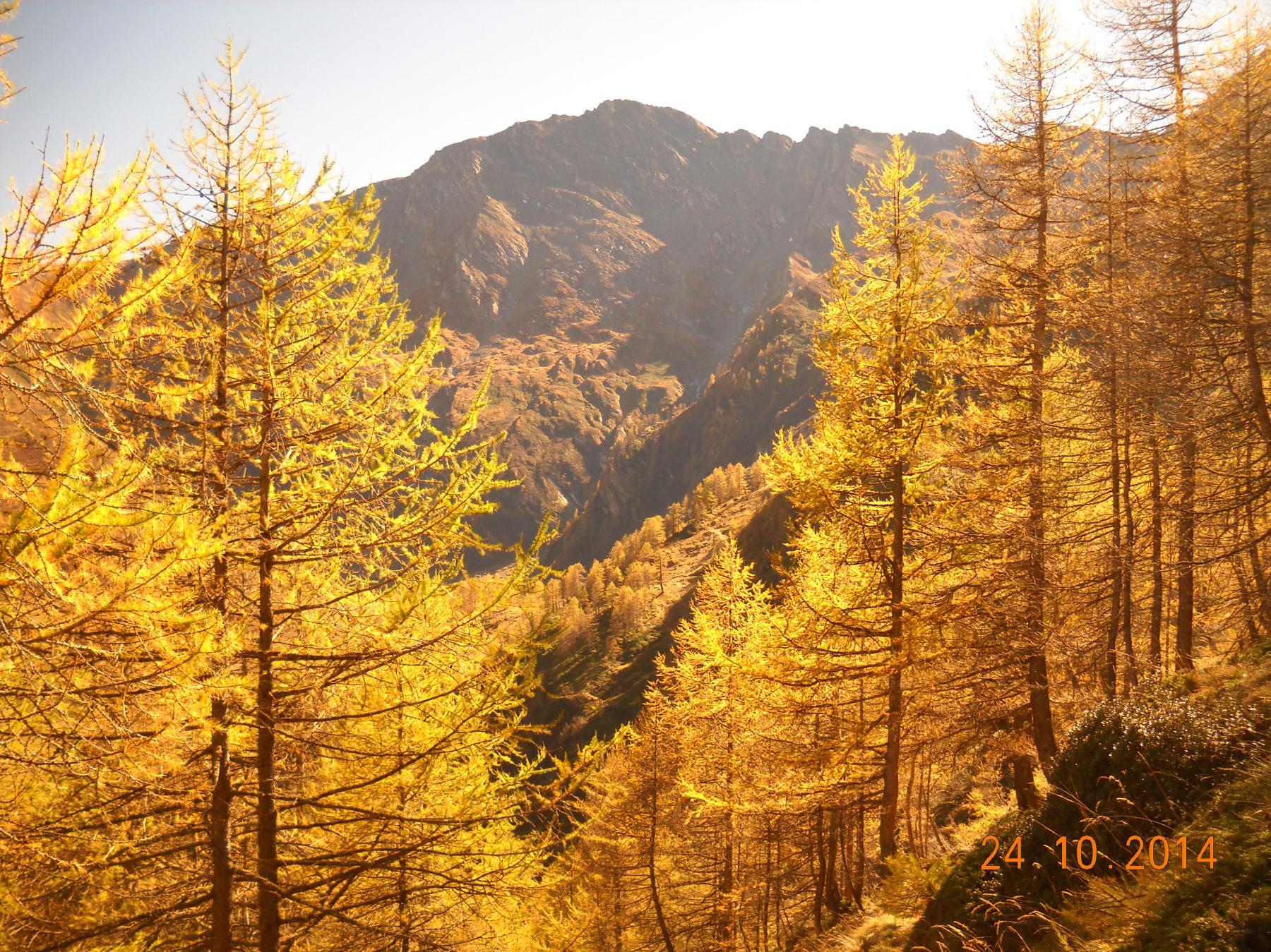 colori d'autunno e P.Vergia