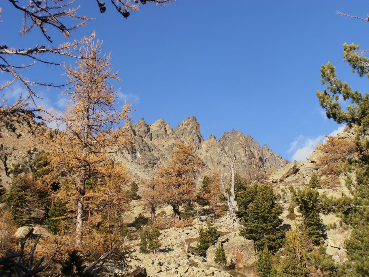 Lobbie (Cima delle), cima NE da Castello per il Vallone del Duc e la Via Normale per il Canale NO 2014-11-01